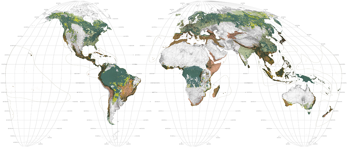 World maps deforestation deforestation gumiabroncs Images