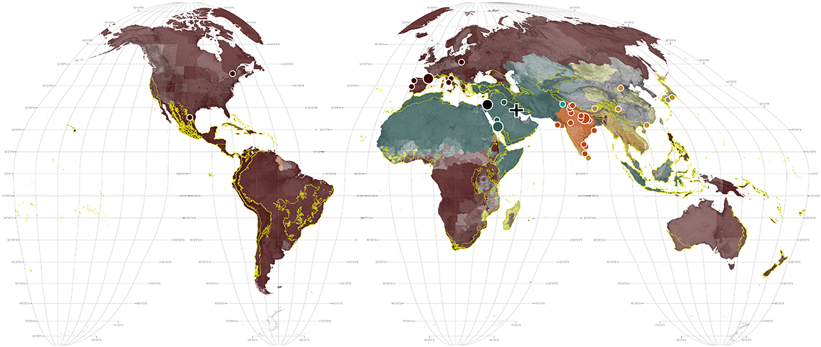 World maps religion religion gumiabroncs Image collections